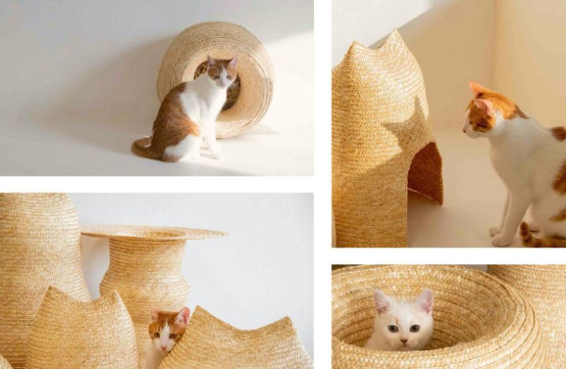 Core77 Design Awards: WHECAT Cat Houses Made from Wheat Straws