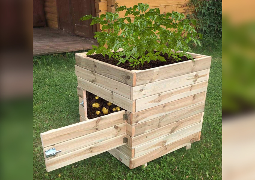 Wooden Potato Planter by Horizon Design Studios