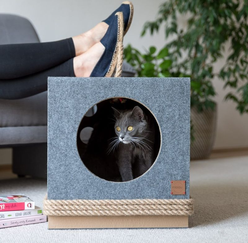 MIOOU Cat Furniture Will Make Both, You & Your Cat Happy