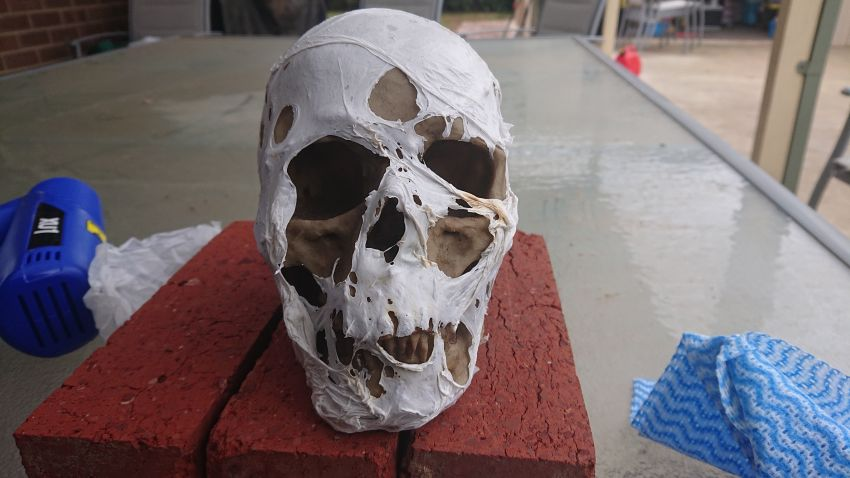 How to Corpse a Skull for Halloween Decoration
