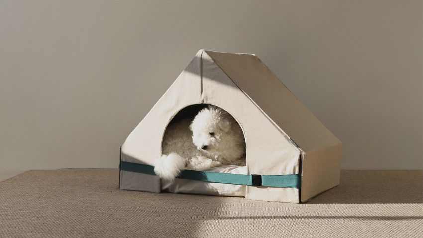 This Customizable Pet House Satisfies Different Pet Personalities