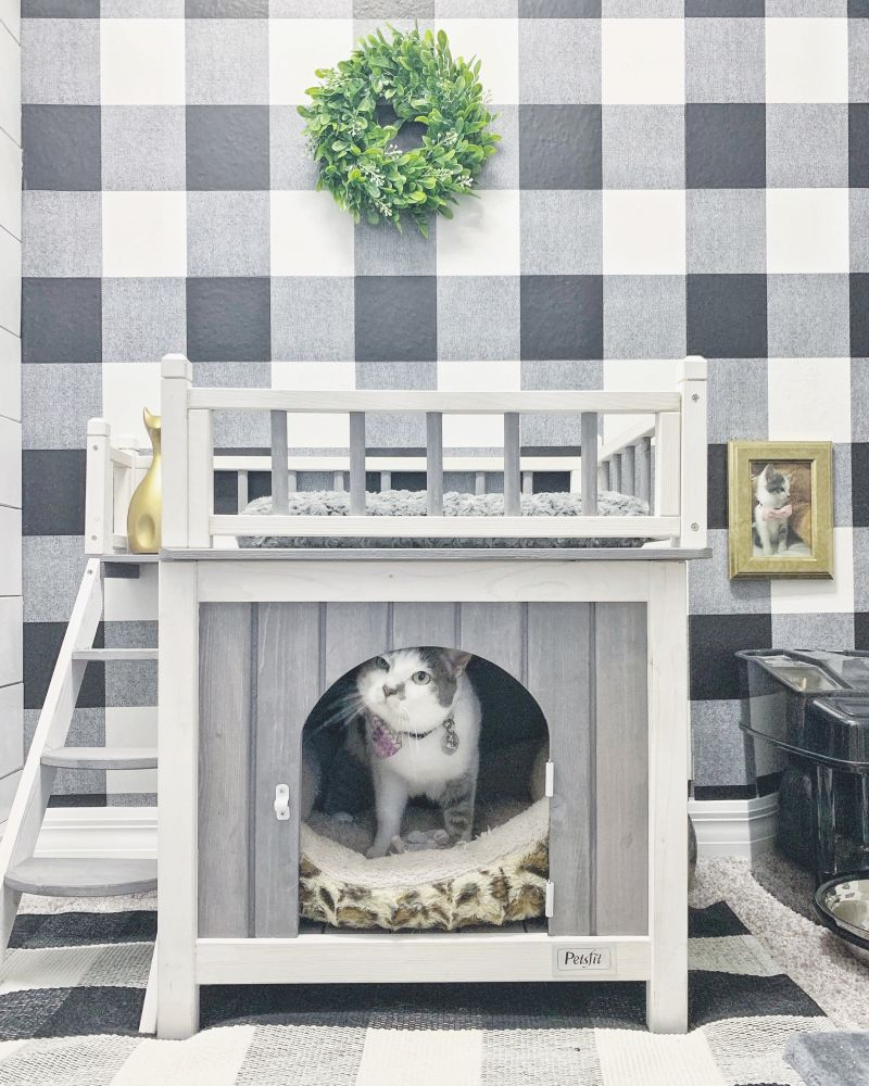 Couple Builds Separate Cat Room for their Beloved Kitty