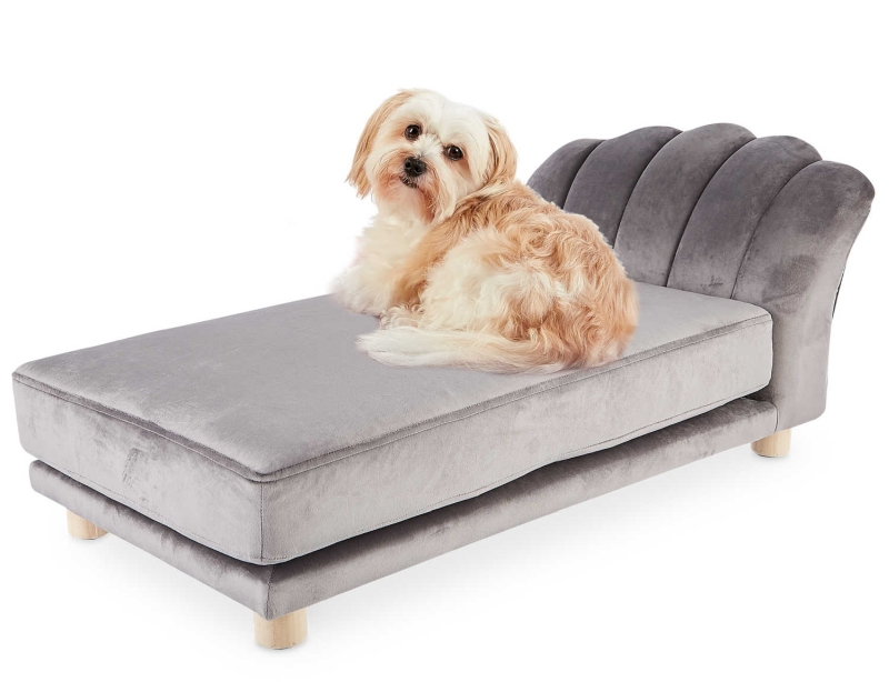 Aldi's brand new pet furniture to make your pets rest in style