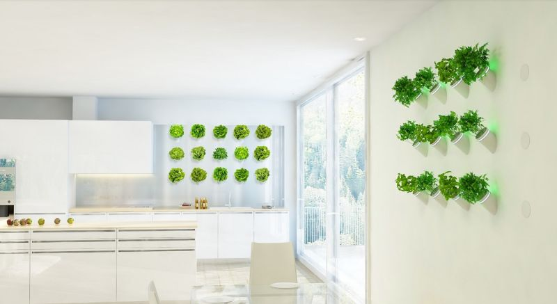 Creo Introduces AI-Powered BioBulb for Optimal Growth of Indoor Plants