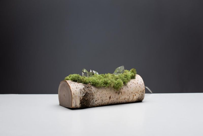 Shroom in the Room Creates Quirky Night Lamps out of Wood, Moss and Crystals