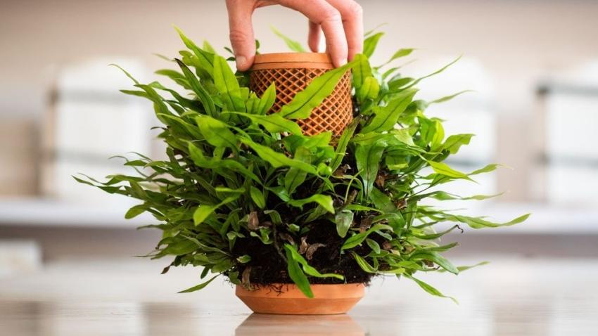 Inside out Hydroponic Terraplanter makes Planting Seem Effortless