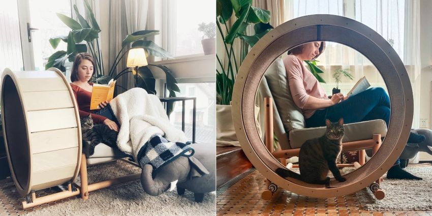 Loveseat Armchair with Cat Running Wheel is Perfect for Cat Lovers