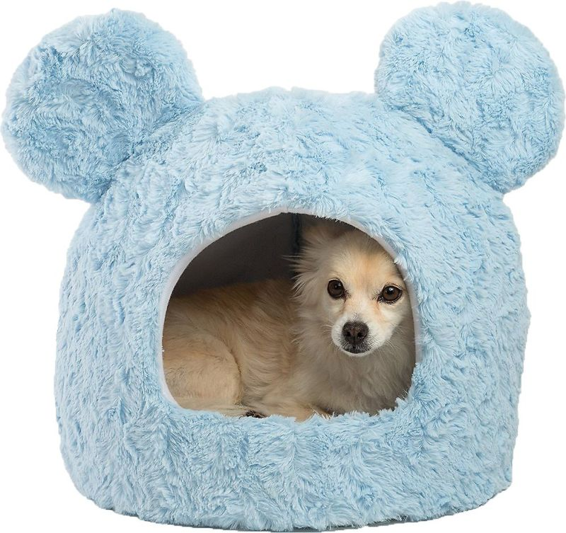 Chewy's Disney-Themed Pet Collection: Here are Our Favorites