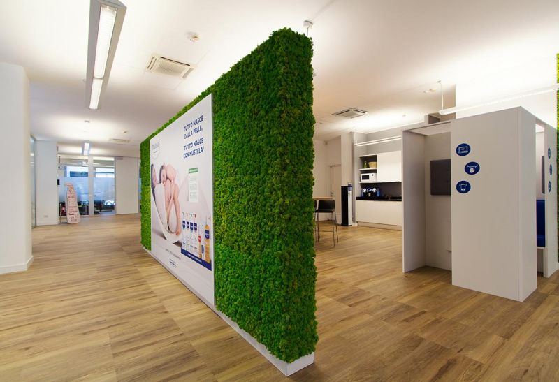 Benetti Home Creates Low-Maintenance and Long-Lasting Vertical Moss Gardens
