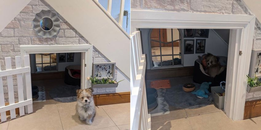 Couple Builds Doghouse Under Stairs for Their Beloved Pup