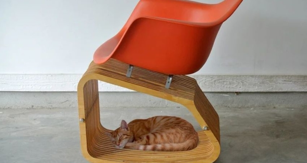 This Unique Chair Rocks both You and Your Pet Together