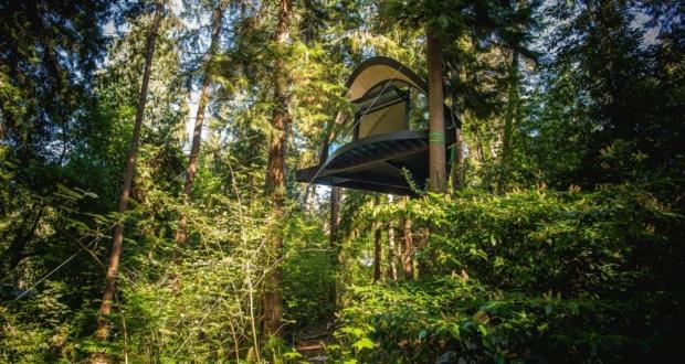 Blackbird Treehouse in Seattle Hangs 25-feet High From Ground