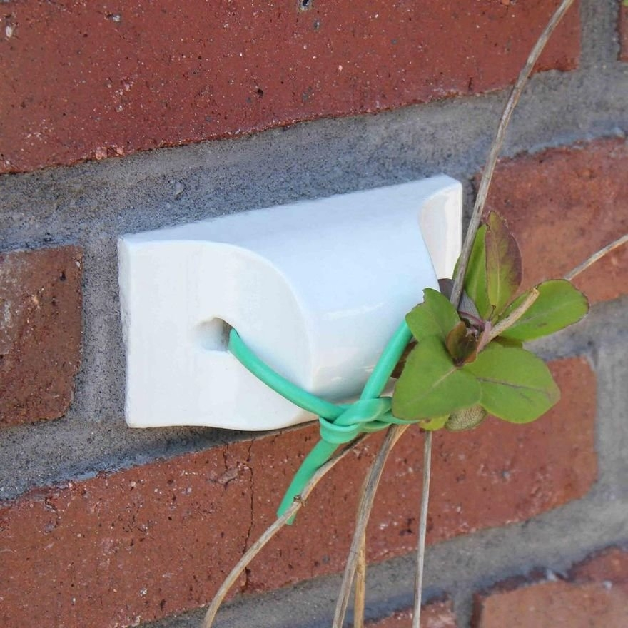 Binder Klinker Special Bricks Work as Clipper to Attach Plants to Your Façade