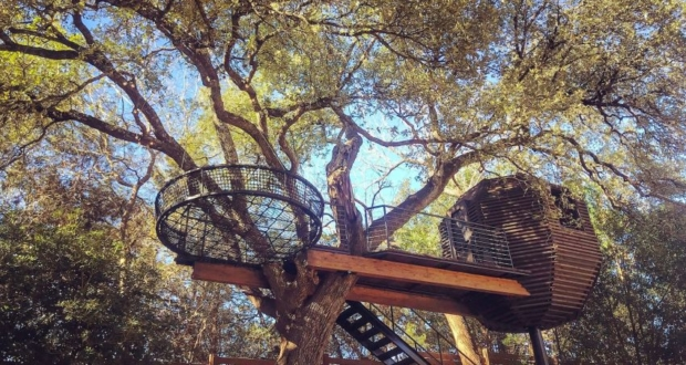 Gibbs Hollow Treehouse in Austin, TX Perfectly Blends into Nature