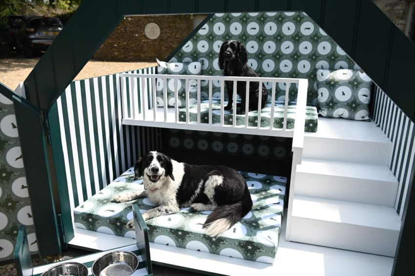 Designer Laurence Llewelyn-Bowen Creates First Wellness-Inspired Doghouse