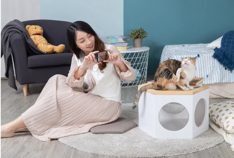 MYZOO Studio Introduces Cat Chair That Keep Your Feline Buzzing