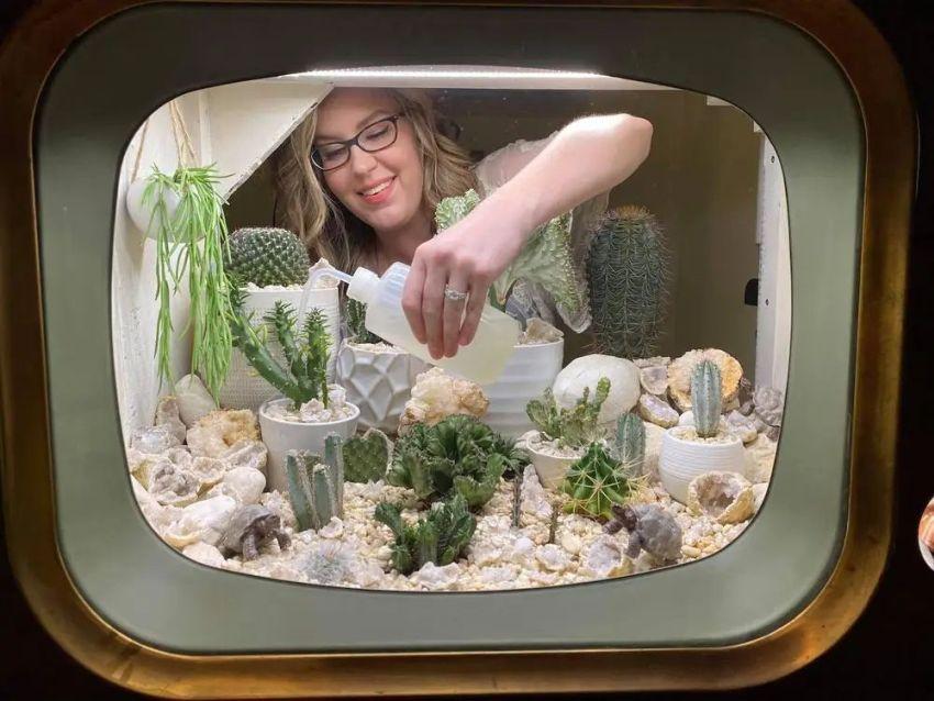 Woman Repurposes Retro TV as Terrarium for Her Cactuses
