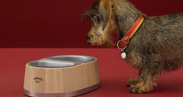 Hermès Launches Wood and Steel Dog Bowl