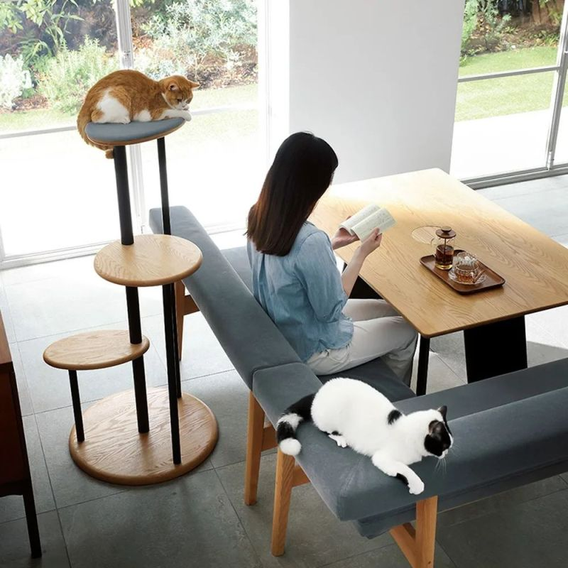 This Unique Dining Table has a Seat for Your Feline Friend