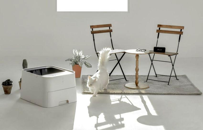 pluto-square-cat-litter-cube